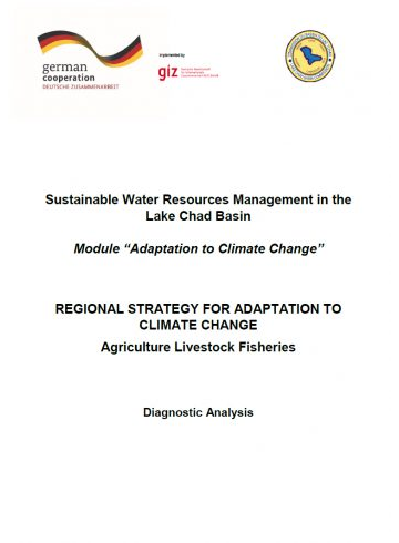 Sustainable Water Resources Management in the Lake Chad Basin